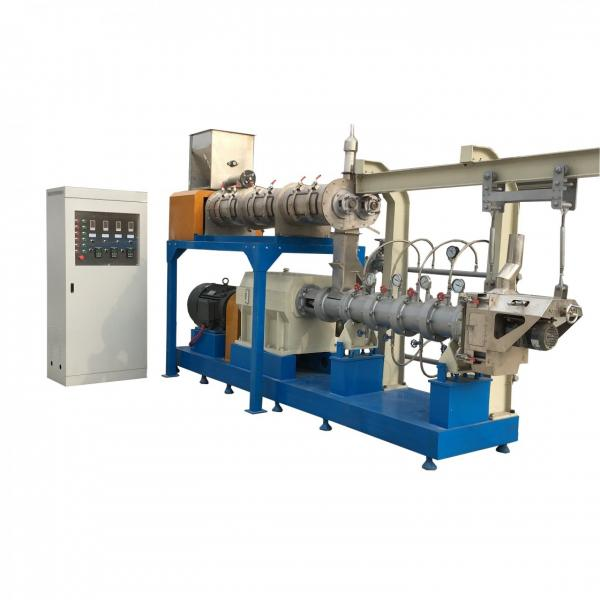 High Quality Dry Type Floating Fish Feed Pellet Extruder Machine From China